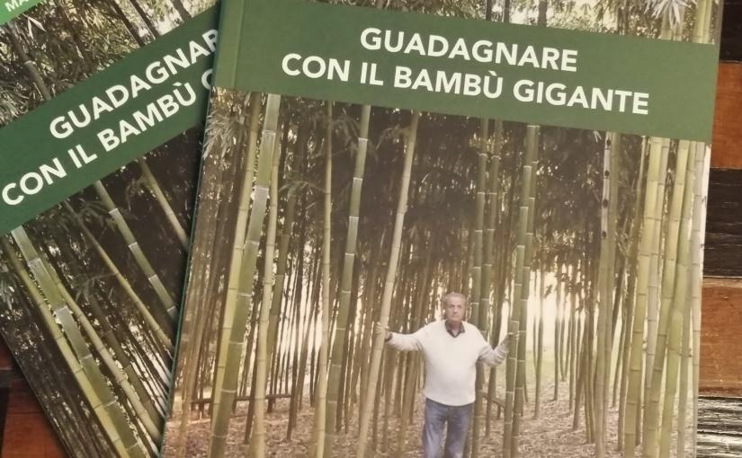 Guadagnare con il BambùGigante