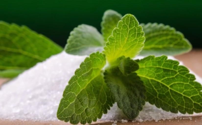 Infusi di stevia un pò di chiarezza non guasta!