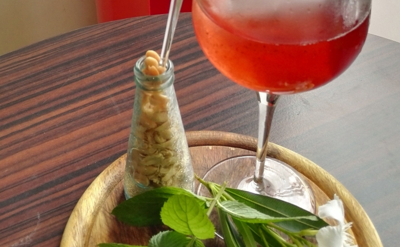 1° cocktail Campari ed infuso di stevia