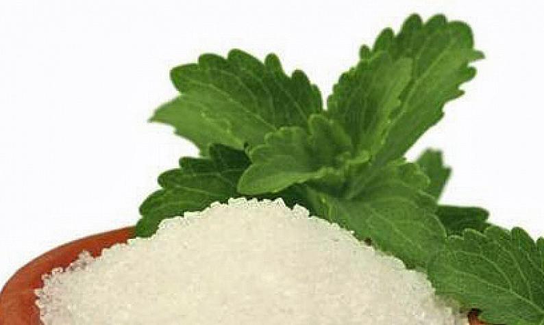 Crescita consumi stevia U.S.A. +31% Italia0%