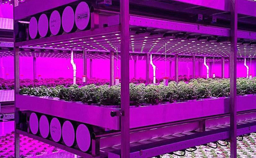 Illuminazione a LED ad investimento zero si può?